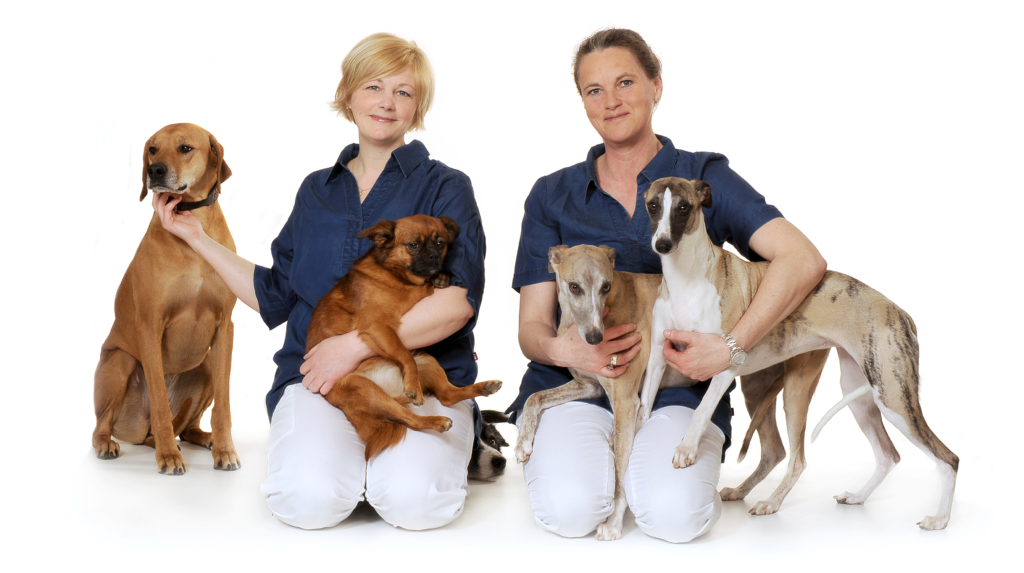 Lokal professionell veterinärklinik på Bjäre
